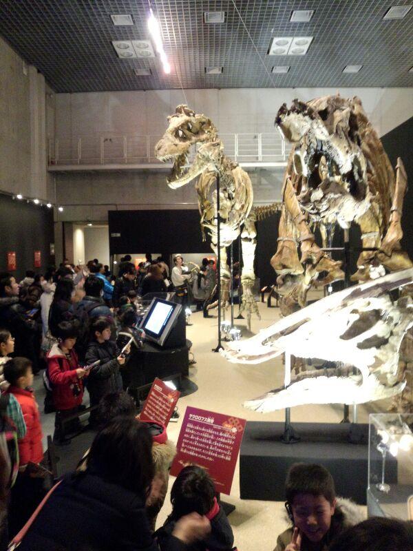 大恐竜展、インド 開場時間にあわせて出向いたのだが、さすがにすごい賑わいだった。   松沢友紀は