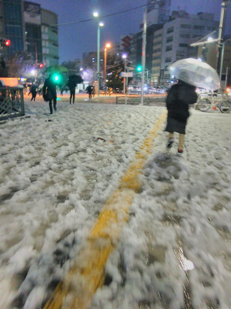 東京にも雪