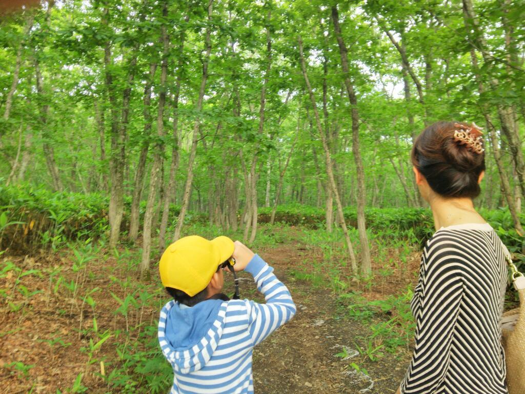 羽鳥湖レジーナの森