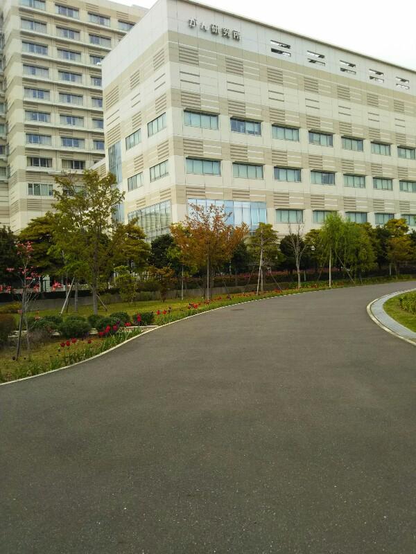 中岡さん、最後の散歩道