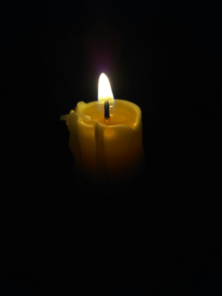 ハチミツの蝋燭を見るMJ
