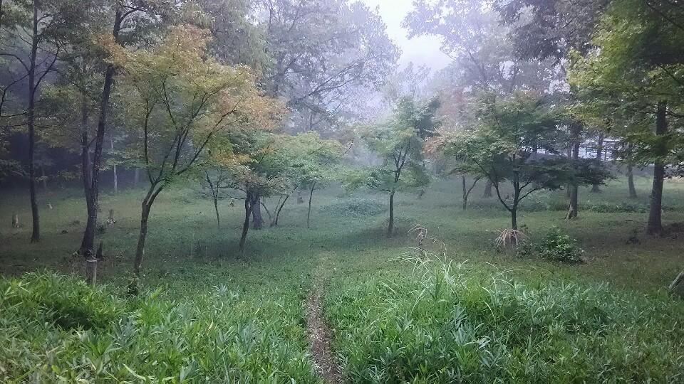 広島・庄原の里山散歩